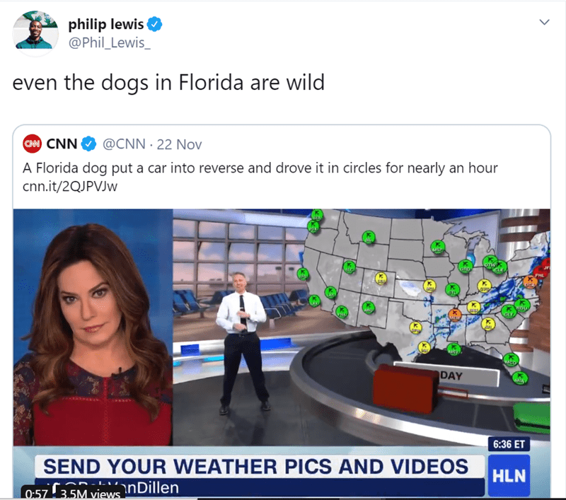 Web page - philip lewis @Phil Lewis_ even the dogs in Florida are wild CAN CNN @CNN 22 Nov A Florida dog put a car into reverse and drove it in circles for nearly an hour cnn.it/2QJPVJW ORD PHL RDU DAY 6:36 ET SEND YOUR WEATHER PICS AND VIDEOS HLN nDillen 0.57 3.5M views