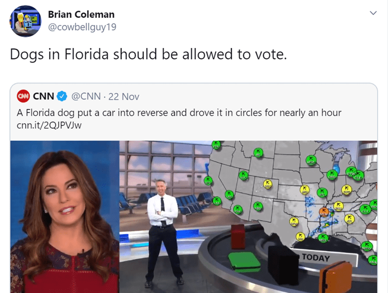 Product - Brian Coleman @cowbellguy19 Dogs in Florida should be allowed to vote. CAM CNN @CNN 22 Nov A Florida dog put a car into reverse and drove it in circles for nearly an hour cnn.it/2QJPVJW onw ORD TODAY MIA