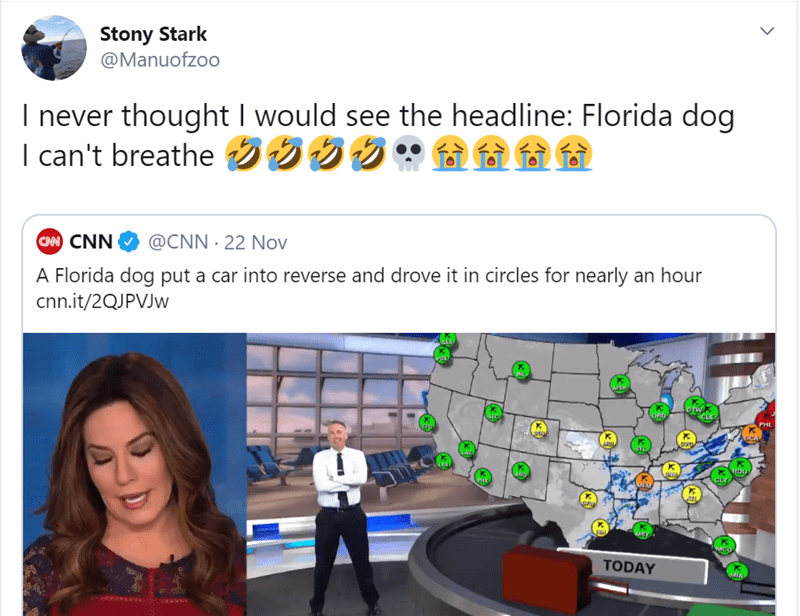Text - Stony Stark @Manuofzoo I never thought I would see the headline: Florida dog I can't breathe S CAN CNN @CNN 22 Nov A Florida dog put a car into reverse and drove it in circles for nearly an hour cnn.it/2QJPVJW wiSP OTW CEC PHL uCA DU TODAY MIAL