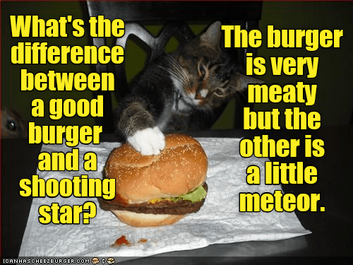 Cheezburger Image 9393483008
