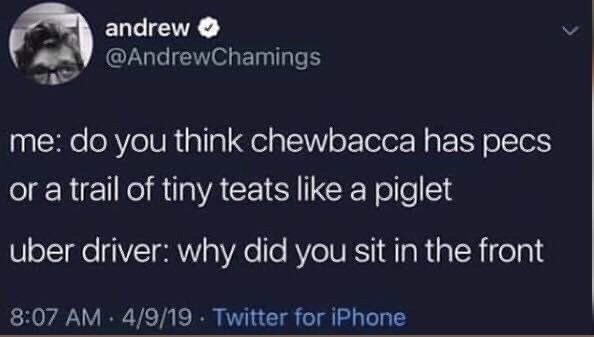 Text - andrew @AndrewChamings me: do you think chewbacca has pecs or a trail of tiny teats like a piglet uber driver: why did you sit in the front 8:07 AM 4/9/19 Twitter for iPhone