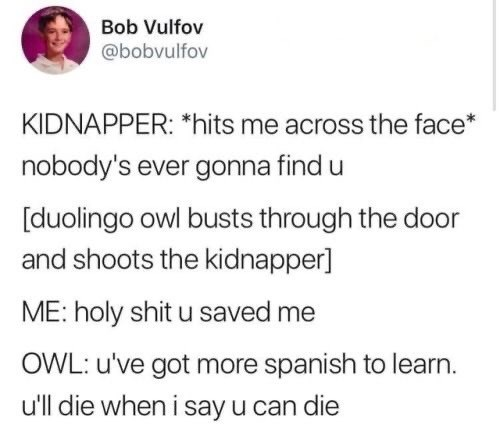Text - Bob Vulfov @bobvulfov KIDNAPPER: *hits me across the face* nobody's ever gonna find u [duolingo owl busts through the door and shoots the kidnapper] ME:holy shit u saved OWL: u've got more spanish to learn. u'll die when i say u can die