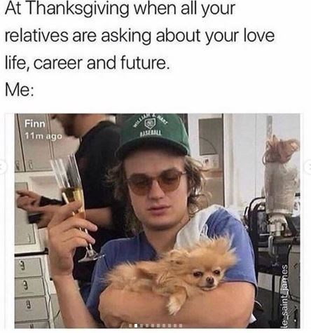 Pomeranian - At Thanksgiving when all your relatives are asking about your love life, career and future. Me: Finn BASERALL 11m ago le saint james