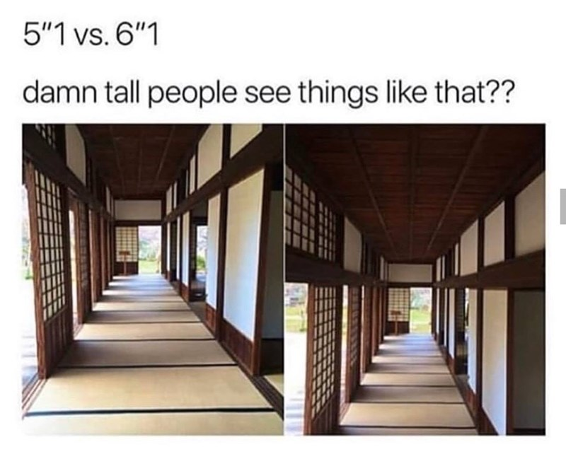 "Architecture - 5""1 vs. 6""1 damn tall people see things like that??"