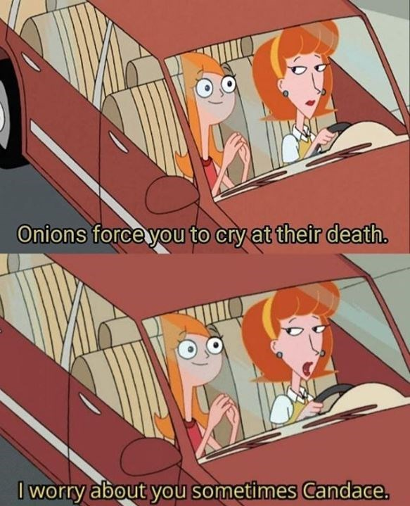 Cartoon - Onions force you to cry at their death. Iworry about you sometimes Candace.