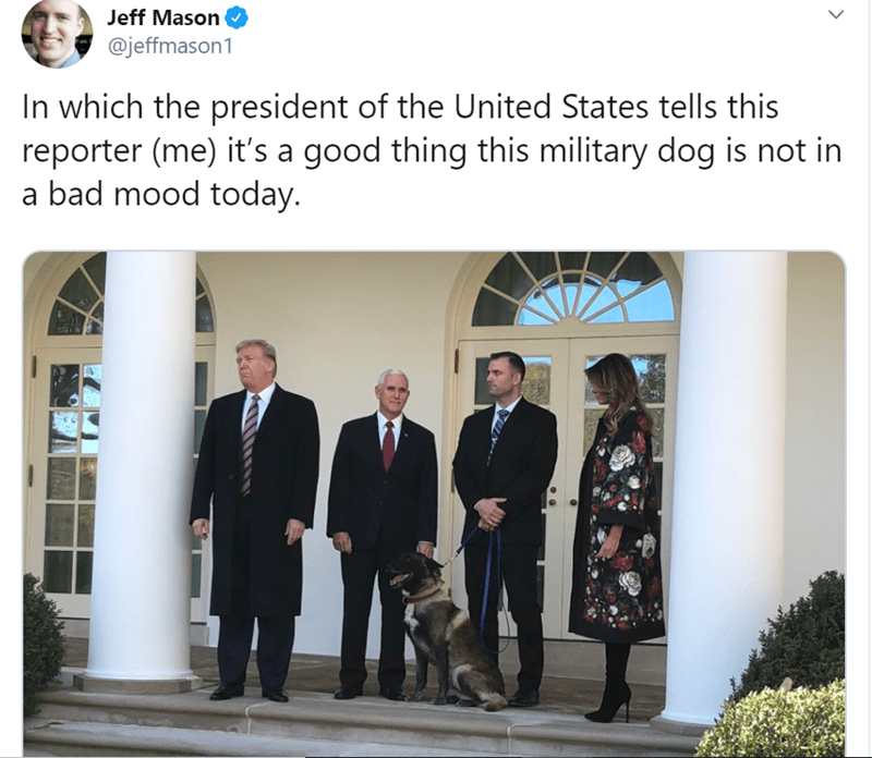 Adaptation - Jeff Mason @jeffmason1 In which the president of the United States tells this reporter (me) it's a good thing this military dog is not in a bad mood today.