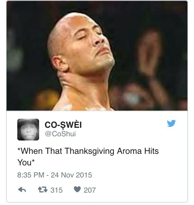 "Face - Co-ŞWEI @CoShui ""When That Thanksgiving Aroma Hits You* 8:35 PM - 24 Nov 2015 t315 207"