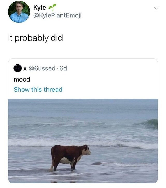 Text - Kyle @KylePlantEmoji It probably did x @6ussed 6d mood Show this thread