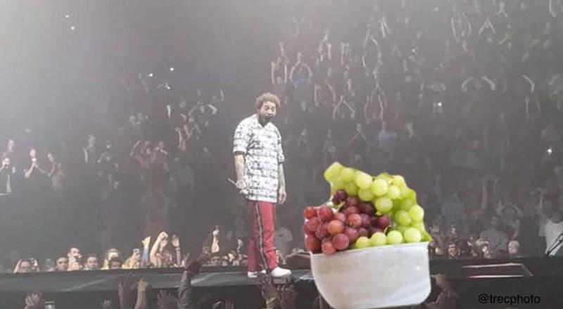 Fruit - @trecphoto