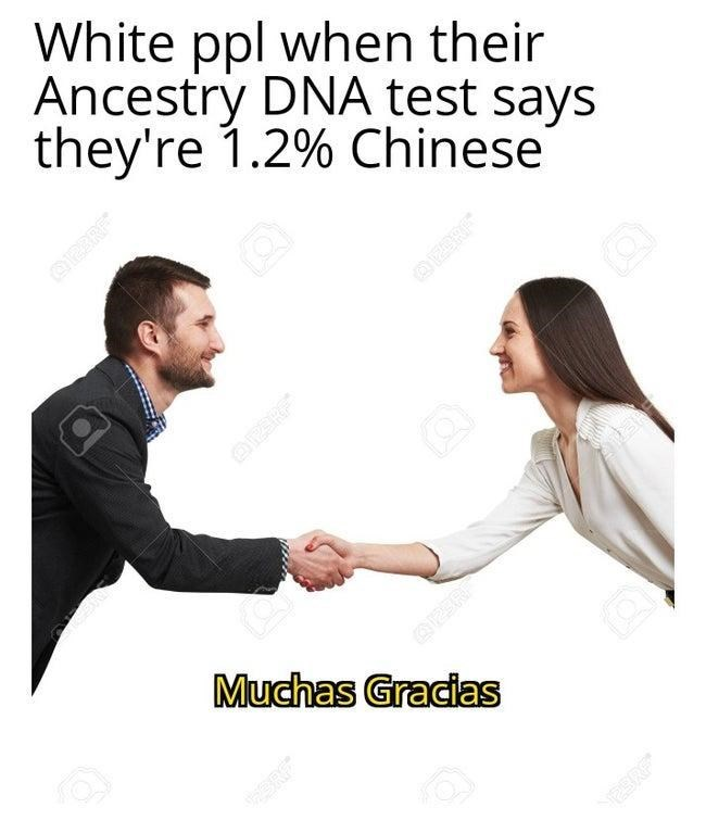 People - White ppl when their Ancestry DNA test says they're 1.2% Chinese O2ERE OZERE Q2ER Muchas Gracias OPERE