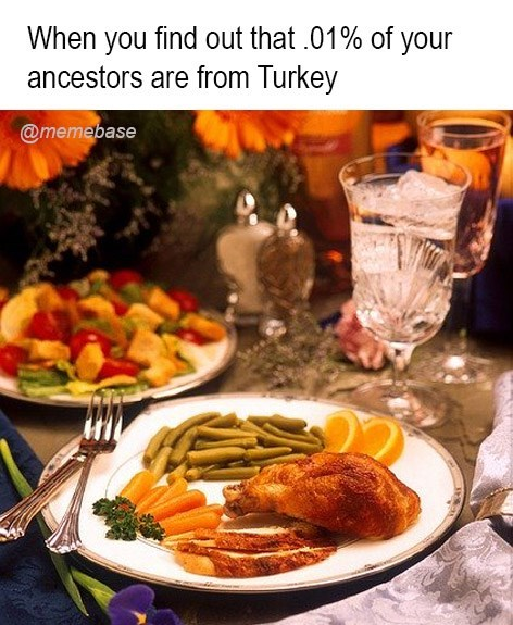Dish - When you find out that 01% of your ancestors are from Turkey @memebase
