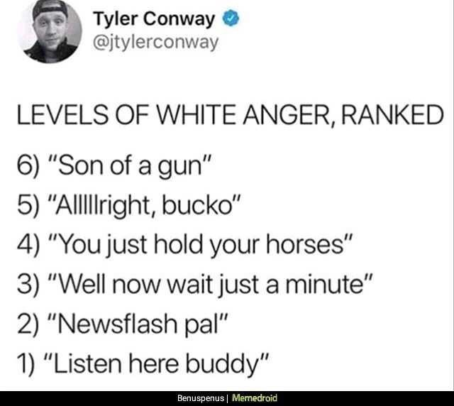 "Text - Tyler Conway @jtylerconway LEVELS OF WHITE ANGER, RANKED 6) ""Son of a gun"" 5) ""Allllight, bucko"" 4) ""You just hold your horses"" 3) ""Well now wait just a minute"" 2) ""Newsflash pal"" 1) ""Listen here buddy"" Benuspenus Memedroid"