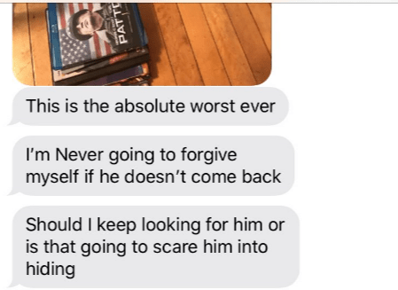Text - This is the absolute worst ever I'm Never going to forgive myself if he doesn't come back Should I keep looking for him or is that going to scare him into hiding PATT