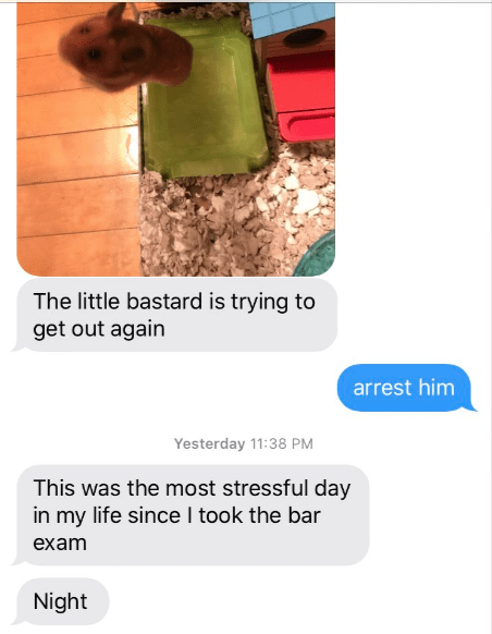 Soil - The little bastard is trying to get out again arrest him Yesterday 11:38 PM This was the most stressful day in my life since I took the bar exam Night