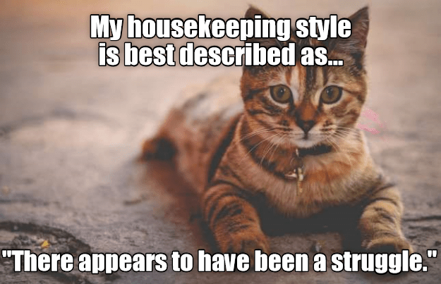 """Cat - My housekeeping style is best described as.. """"There appears to have been a struggle."""""""