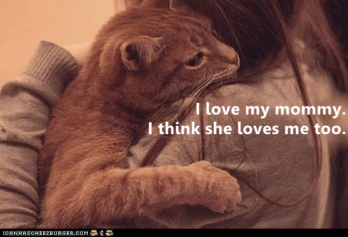 Cat - I love my mommy. I think she loves me too. CANHASCHEE2EURGER cOM