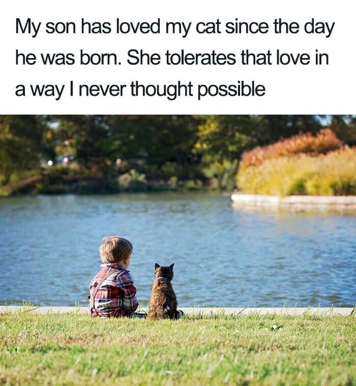 Natural landscape - My son has loved my cat since the day he was bon. She tolerates that love in a way I never thought possible