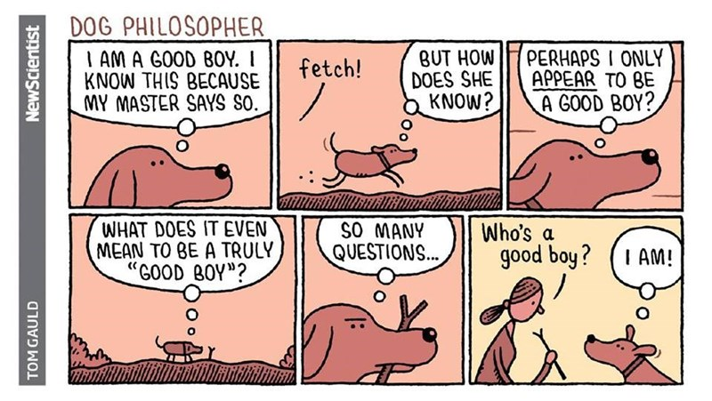 "Cartoon - DOG PHILOSOPHER PERHAPS I ONLY APPEAR TO BE A GOOD BOY? BUT HOW DOES SHE KNOW? IAM A GOOD B0Y. I KNOW THIS BECAUSE MY MASTER SAYS SO. fetch! WHAT DOES IT EVEN MEAN TO BE A TRULY ""GOOD BOY""? SO MANY QUESTIONS... Who's a good boy? I AM! TOM GAULD NewScientist"