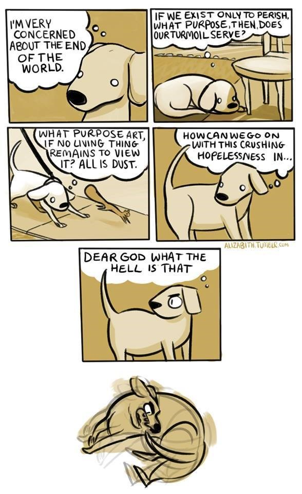 Comics - IF WE EXIST ONLY TO PERISH WHAT PURPOSE,THEN,DOES OURTURMOILSERVE? I'M VERY CONCERNED ABOUT THE END, OF THE WORLD. WHAT PURPOSE ART, IF NO LIVING THING REMAINS TO VIEW IT? ALL IS DUST HOWCANWEGO ON WITH THIS CRUSHING HOPELESSNESS IN... ALIZABITH TUNIBLR cOM DEAR GOD WHAT THE HELL IS THAT