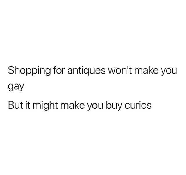 Text - Shopping for antiques won't make you gay But it might make you buy curios