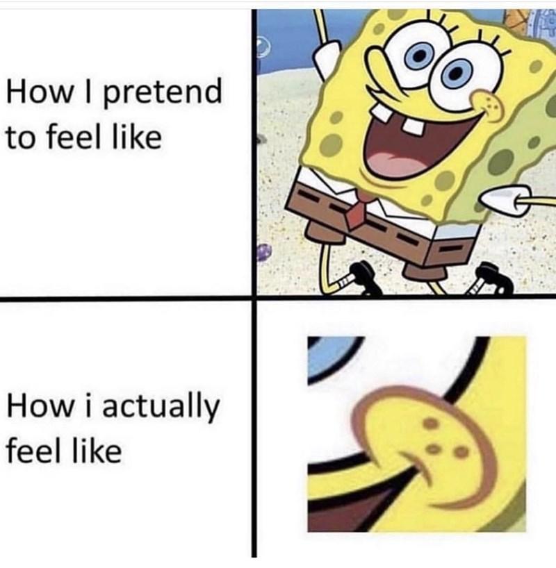 Cartoon - How I pretend to feel like How i actually feel like