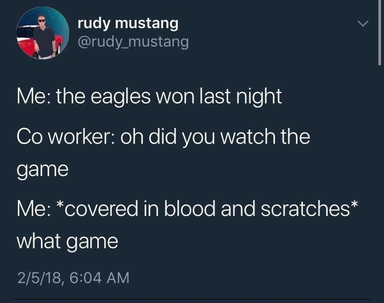 Text - rudy mustang @rudy mustang Me: the eagles won last night Co worker: oh did you watch the game Me: *covered in blood and scratches* what game 2/5/18, 6:04 AM