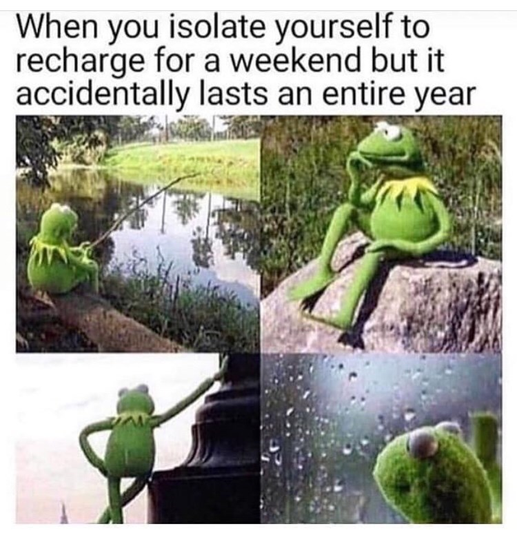 Frog - When you isolate yourself to recharge for a weekend but it accidentally lasts an entire year