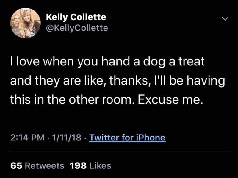 Text - Kelly Collette @KellyCollette L I love when you hand a dog a treat and they are like, thanks, I'll be having this in the other room. Excuse me. 2:14 PM 1/11/18 Twitter for iPhone 65 Retweets 198 Likes