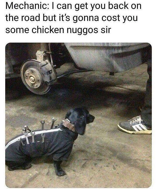 Snout - Mechanic: I can get you back on the road but it's gonna cost you some chicken nuggos sir