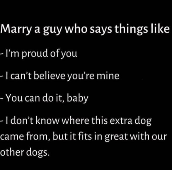 Text - Marry a guy who says things like - I'm proud of you -I can't believe you're mine -- You can do it, baby -I don't know where this extra dog came from, but it fits in great with our other dogs.