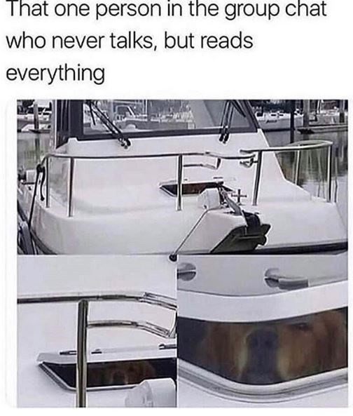 Vehicle - That one person in the group chat who never talks, but reads everything