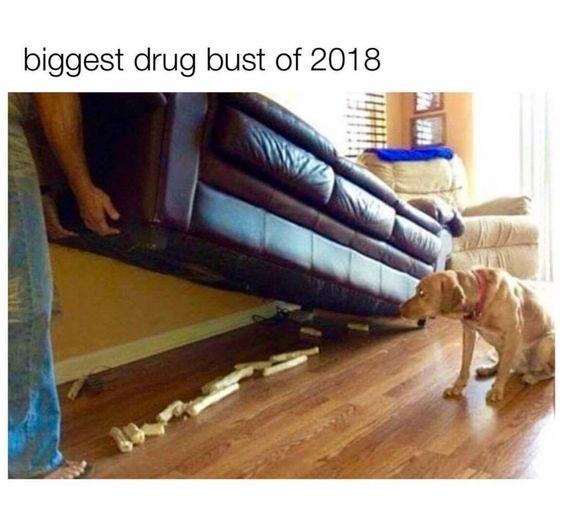 Floor - biggest drug bust of 2018