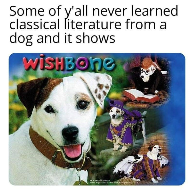 Dog - Some of y'all never learned classical literature from a dog and it shows WISHBONE www.wishbane.com 02008 Big Featal Entertainment ighrs heceed