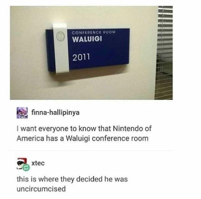 Text - CONFERENCE ROOM WALUIGI 2011 finna-hallipinya I want everyone to know that Nintendo of America has a Waluigi conference room xtec this is where they decided he was uncircumcised
