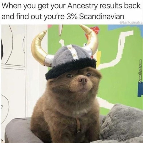 Photo caption - When you get your Ancestry results back and find out you're 3% Scandinavian @tank.sinatra MemeCenter.com