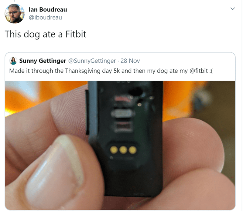 Product - lan Boudreau @iboudreau This dog ate a Fitbit Sunny Gettinger @SunnyGettinger 28 Nov Made it through the Thanksgiving day 5k and then my dog ate my @fitbit:(