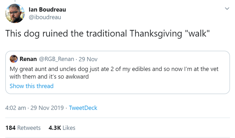 """Text - lan Boudreau @iboudreau This dog ruined the traditional Thanksgiving """"walk"""" Renan @RGB_Renan 29 Nov My great aunt and uncles dog just ate 2 of my edibles and so now I'm at the vet with them and it's so awkward Show this thread 4:02 am 29 Nov 2019 Tweet Deck 4.3K Likes 184 Retweets"""