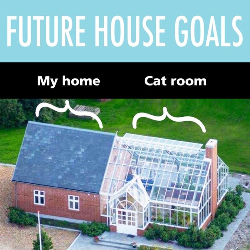 goals Cats funny - 9396839680