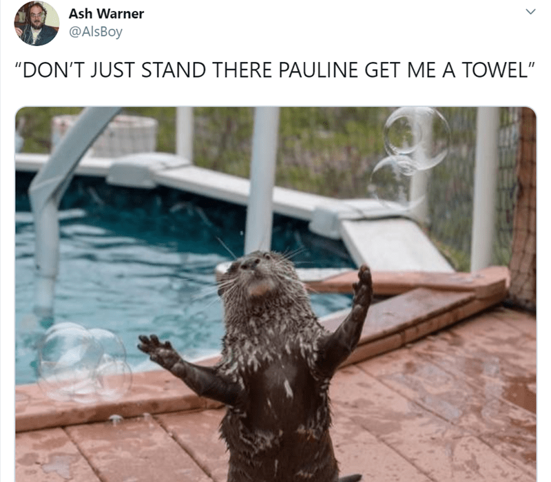 """Adaptation - Ash Warner @AlsBoy """"DON'T JUST STAND THERE PAULINE GET ME A TOWEL"""""""