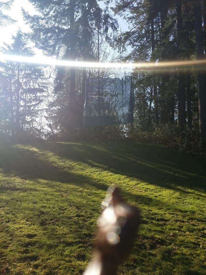 Sunlight - EAHA