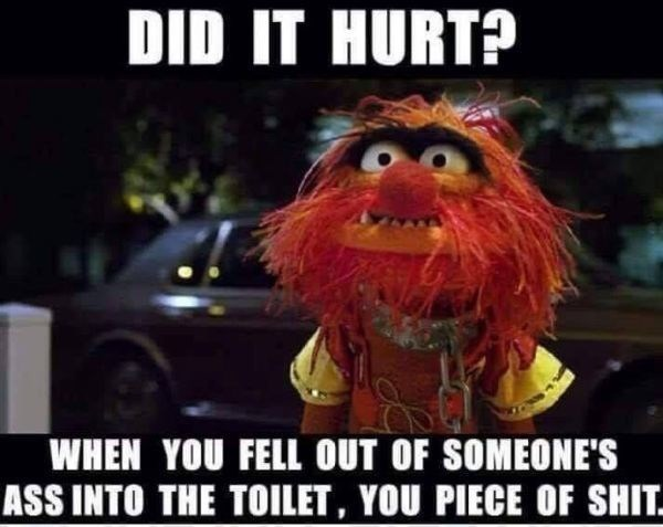 meme - Photo caption - DID IT HURT? WHEN YOU FELL OUT OF SOMEONE'S ASS INTO THE TOILET, YOU PIECE OF SHIT.