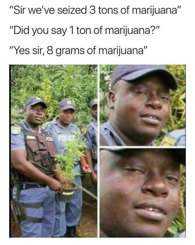 "Adaptation - ""Sir we've seized 3 tons of marijuana"" ""Did you say 1 ton of marijuana?"" ""Yes sir, 8 grams of marijuana"" URPOLICE"