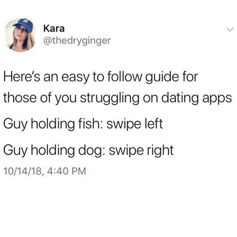 Text - Kara @thedryginger Here's an easy to follow guide for those of you struggling on dating apps Guy holding fish: swipe left Guy holding dog: swipe right 10/14/18, 4:40 PM