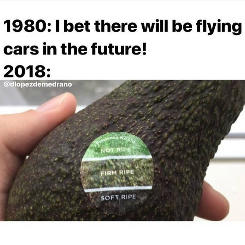 Text - 1980: I bet there will be flying cars in the future! 2018: @dlopezdemedrano max N2 NOT RIPE FIRM RIPE SOFT RIPE