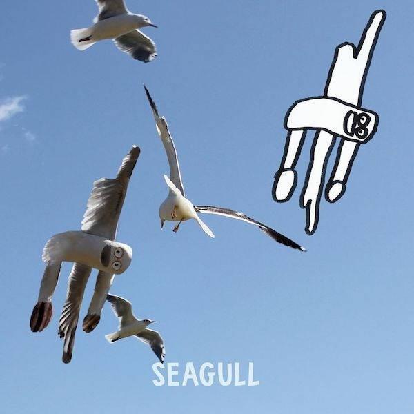 Bird - SEAGULL