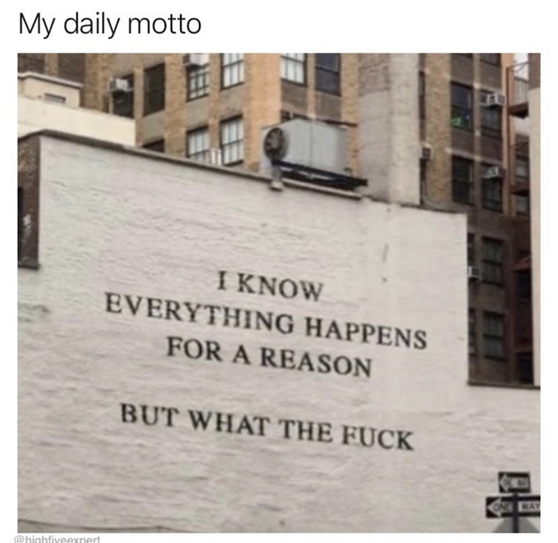 Text - My daily motto ΙΚNOW EVERYTHING HAPPENS FOR A REASON BUT WHAT THE FUCK WAY @highfiveexpert