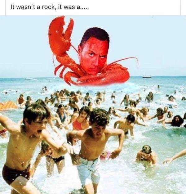 People on beach - It wasn't a rock, it was a..