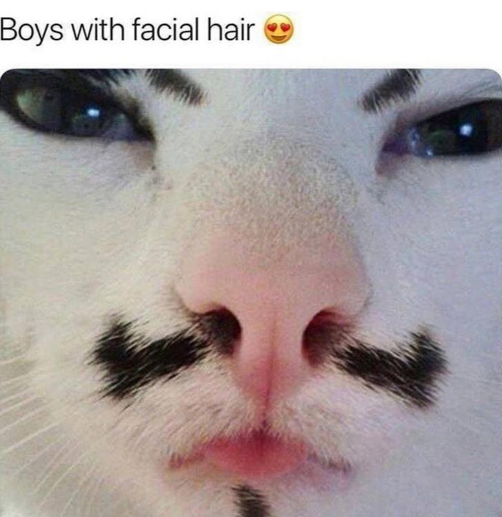 Nose - Boys with facial hair