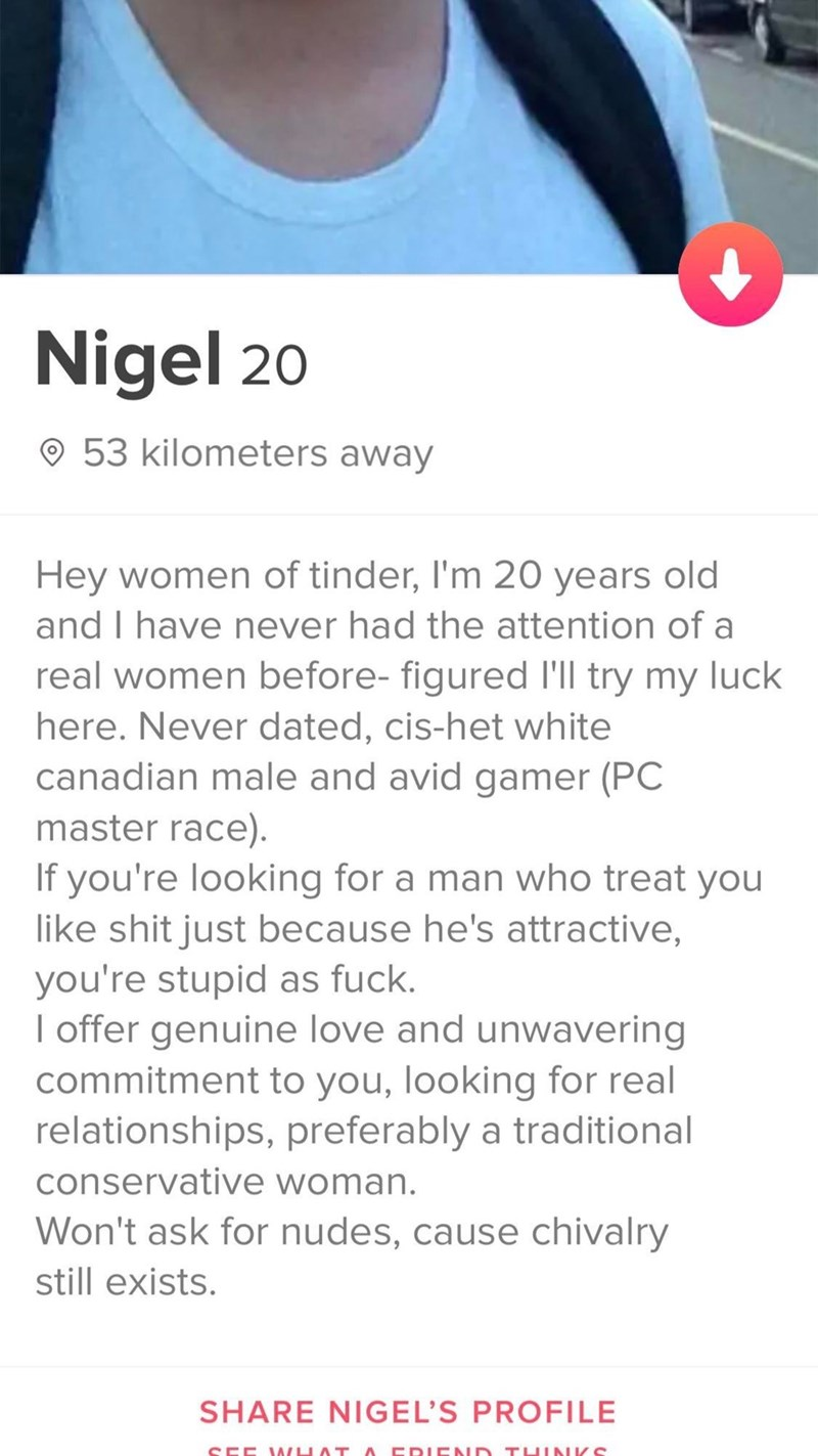 Text - Nigel 20 53 kilometers away Hey women of tinder, I'm 20 years old and I have never had the attention of a real women before- figured I'll try my luck here. Never dated, cis-het white canadian male and avid gamer (PC master race). If you're looking for a man who treat you like shit just because he's attractive, you're stupid as fuck. I offer genuine love and unwavering commitment to you, looking for real relationships, preferably a traditional conservative woman. Won't ask for nudes, cause