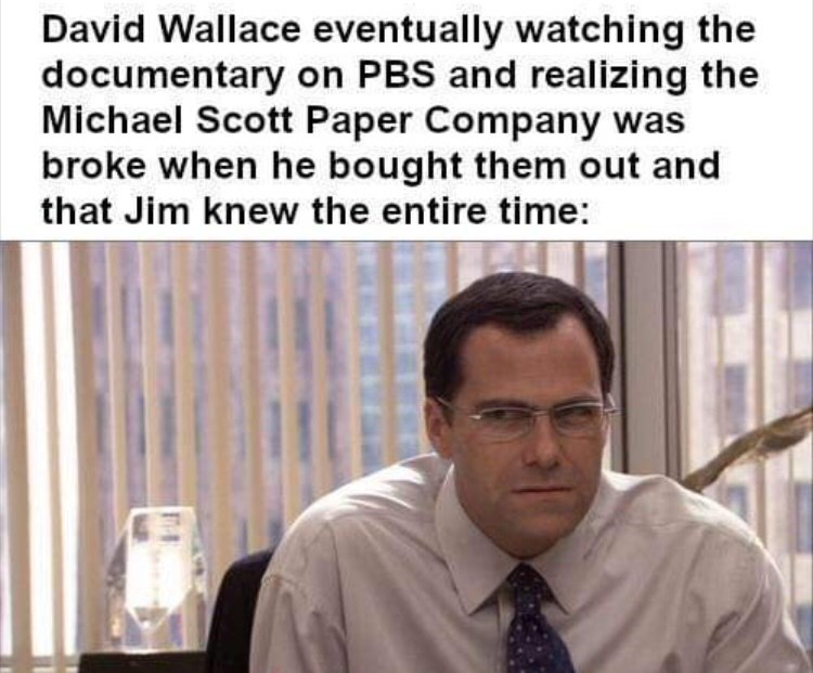 Text - David Wallace eventually watching the documentary on PBS and realizing the Michael Scott Paper Company was broke when he bought them out and that Jim knew the entire time: